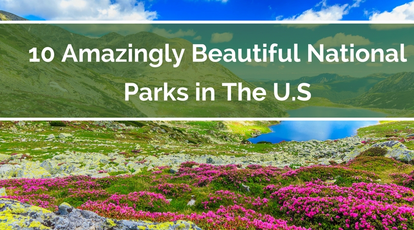 10 Amazingly Beautiful National Parks in The U.S